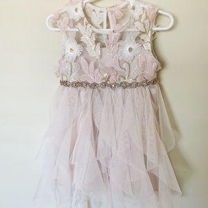 Baby Girl Dress flower girl / wedding/ occasion